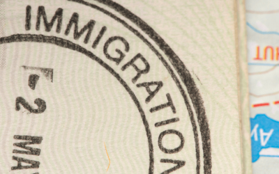 DNA Testing for Immigration: Requirements and Recommendations
