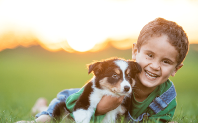 Questions to Ask Puppy Buyers and What They May Ask You